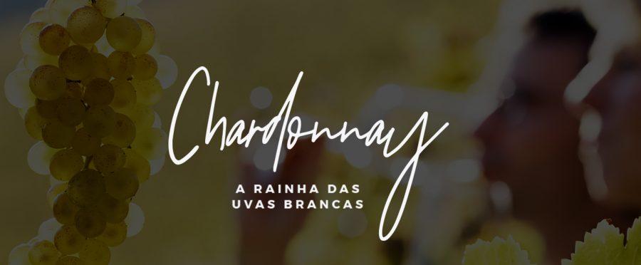Chardonnay: tudo sobre a uva rainha dos vinhos brancos