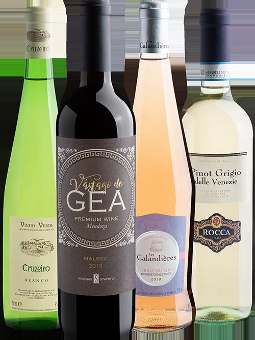 kit curso de vinho