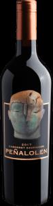 Botão para comprar vinhos chilenos