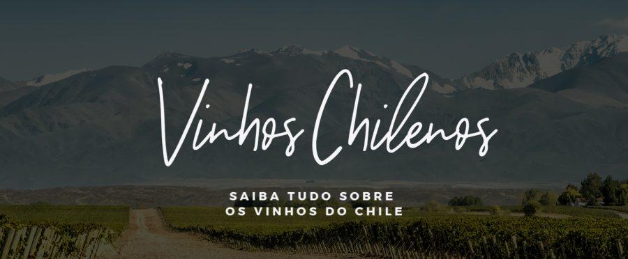 Vinhos chilenos: saiba tudo sobre a bebida no país