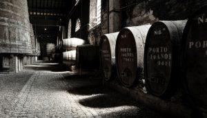 Barricas de carvalho em uma vinícola