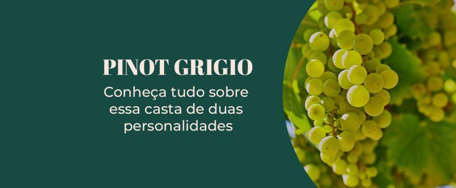 Pinot Grigio: conheça tudo sobre essa casta de duas personalidades