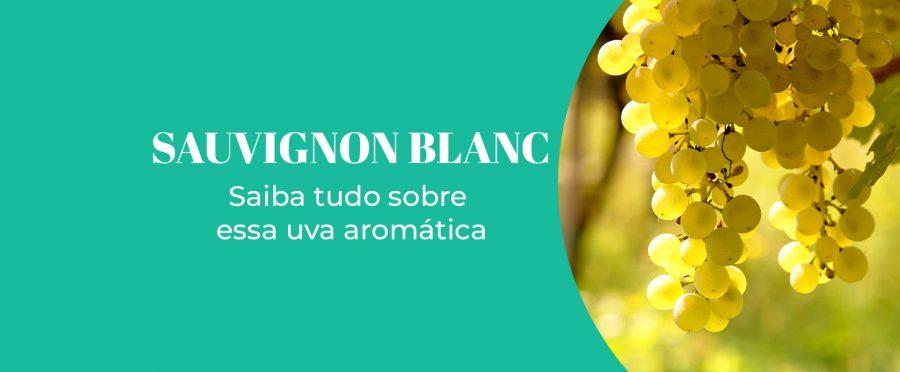 Sauvignon Blanc: saiba tudo sobre essa uva aromática