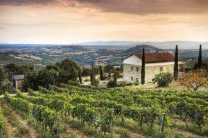 Paisangem mostrando os vinhedos da Toscana em primeiro plano e uma grande casa branca no fundo